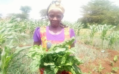DEVELOPING SELF-RELIANCE AMONG WOMEN THROUGH KITCHEN GARDENING
